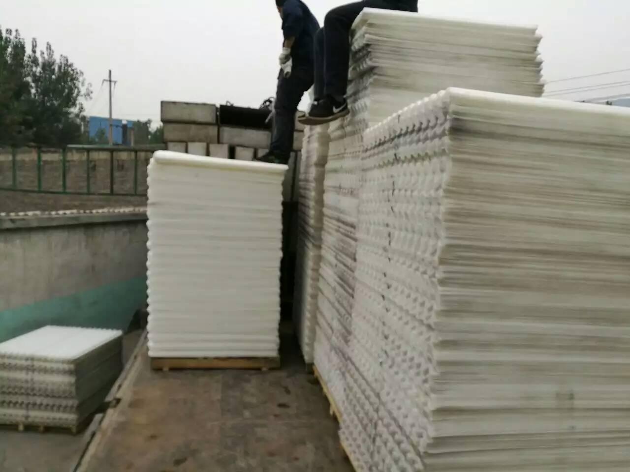 600方斜管填料发往云南